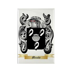 Micale Rectangle Magnet (100 pack)