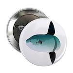 Mola Mola Ocean Sunfish 2.25
