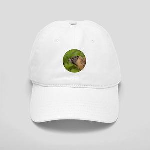 Marmot Cap