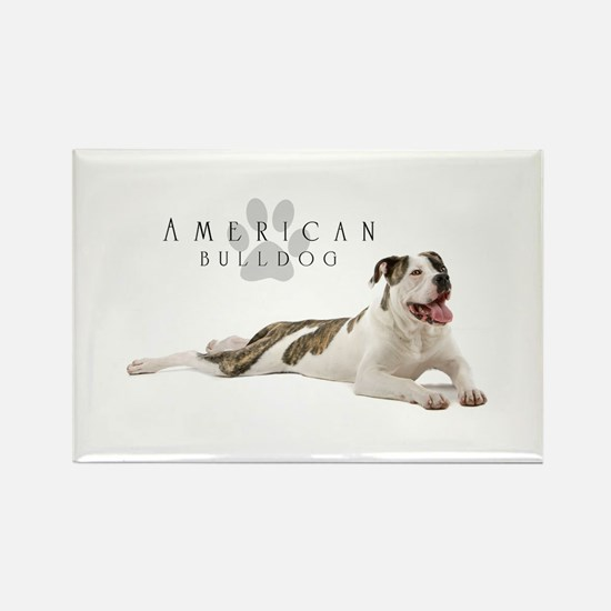 American Bulldog Magnets