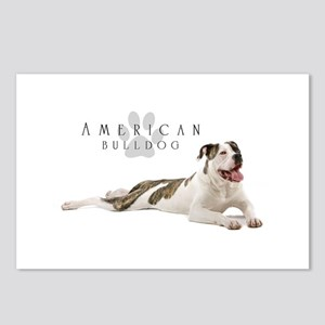 American Bulldog Postcards (Package of 8)