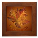 Canada Maple Leaf Souvenir Framed Tile