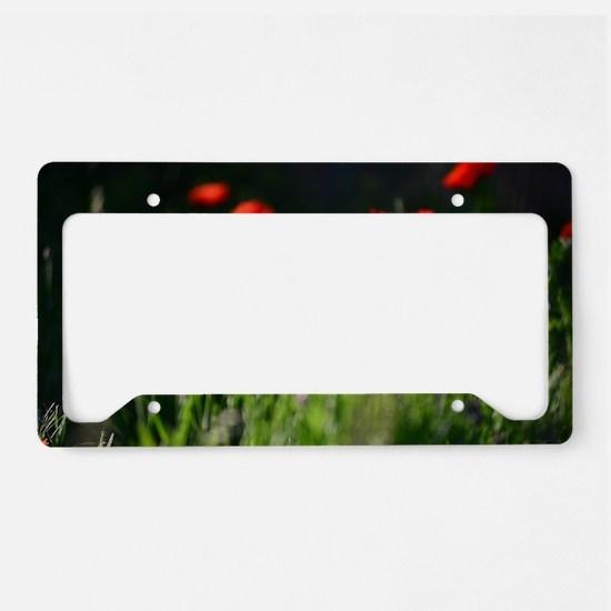 Funny Garden light License Plate Holder