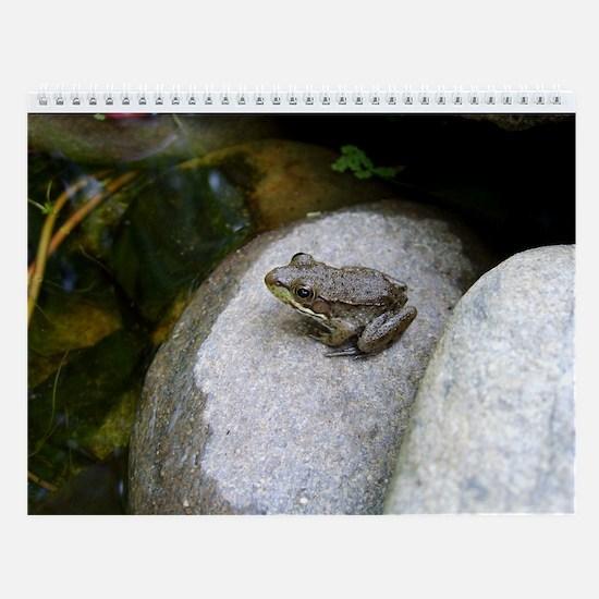 Frogs Monthly Calendar
