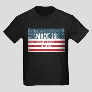 Made in Park Forest, Illinois T-Shirt