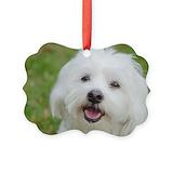 Coton de tulear Picture Frame Ornaments