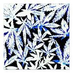 faded blue marijuana leaf Square Car Magnet 3