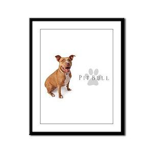 Pit Bull Framed Panel Print