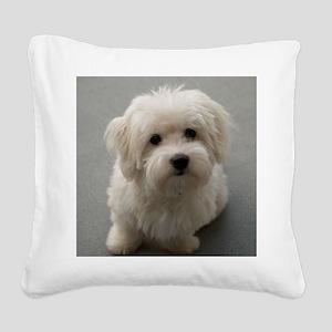 coton de tulear puppy Square Canvas Pillow