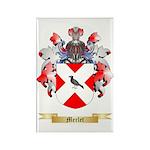 Merlet Rectangle Magnet (100 pack)