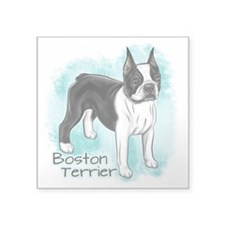 Boston Terrier On Blue Background Sticker