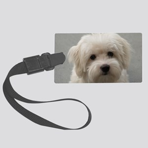 coton de tulear puppy Large Luggage Tag