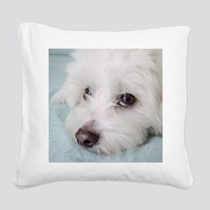 coton de tulear Square Canvas Pillow