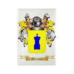Meneses Rectangle Magnet (100 pack)