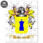 Meneses Puzzle