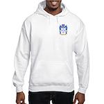 Melton Hooded Sweatshirt