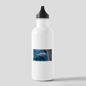 Jaguar Hood Ornament Water Bottle