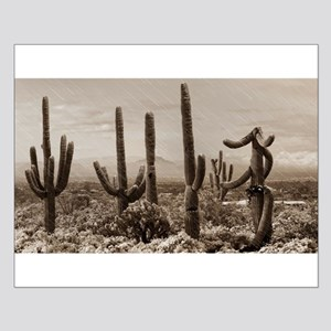 Stormy Winter in the Desert Posters