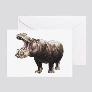 Hippopotamus Greeting Cards