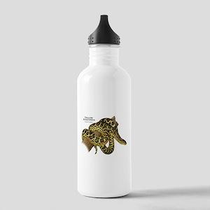 Yellow Anaconda Stainless Water Bottle 1.0L