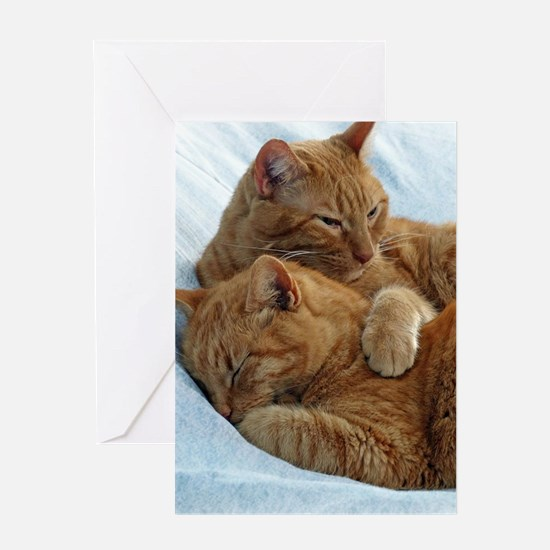 Brotherly Love Greeting Cards