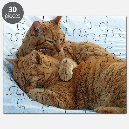 Brotherly Love Puzzle