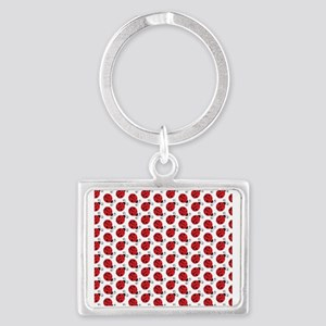 Special Ladybugs Keychains