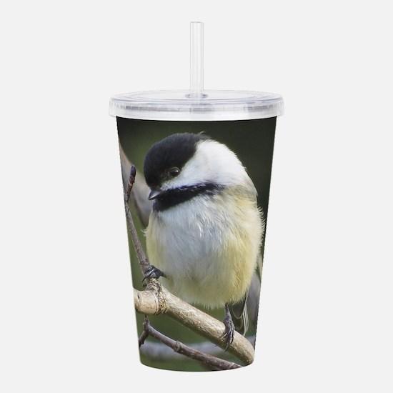 Chickadee Song Bird Acrylic Double-wall Tumbler