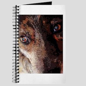 Eyes of Innocence Journal