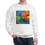 Tactile Sweatshirt