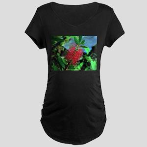 Red Australian bottlebrush flowe Maternity T-Shirt