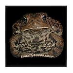 Matilda the American Toad Tile Coaster