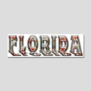 Florida Rust B Car Magnet 10 x 3