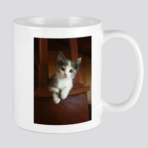 Adorable Calico Kitten Mugs
