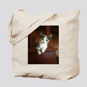 Adorable Calico Kitten Tote Bag
