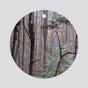 Scenery Of Trees Round Ornament