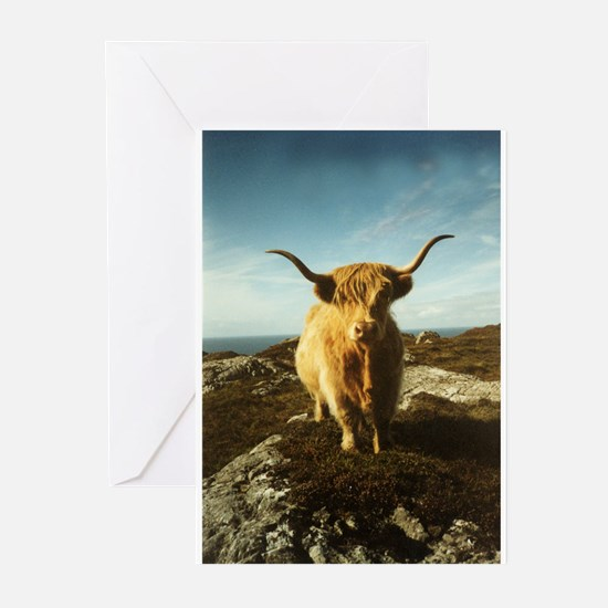 Cute Cow farm Greeting Cards (Pk of 20)