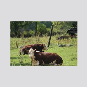 Cattle in a Field Rectangle Magnet