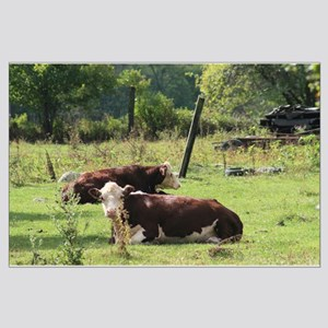 Cattle in a Field Large Poster