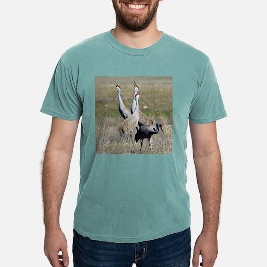 Cranes Calling T-Shirt