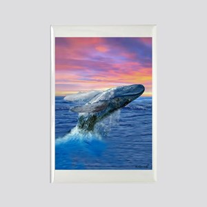 Humpback Whale Breaching at Sunset Magnets