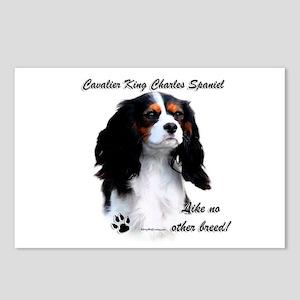 CKCS Breed Postcards (Package of 8)