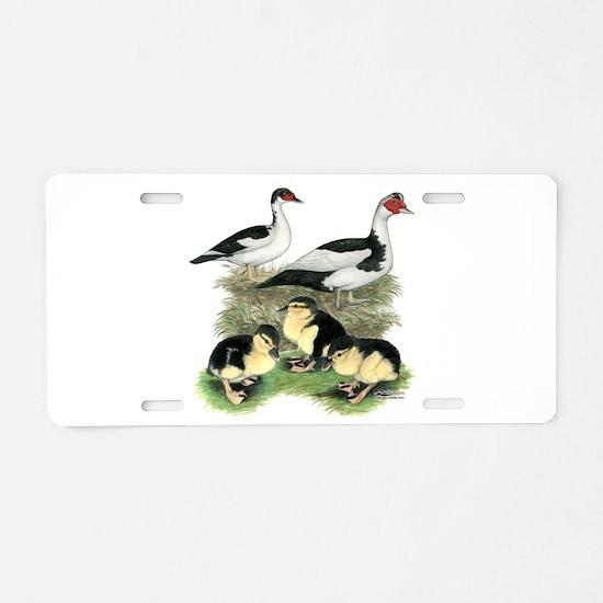 Muscovy Ducks Black Pied Aluminum License Plate
