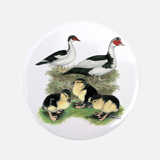 Muscovy Ducks Black Pied Button