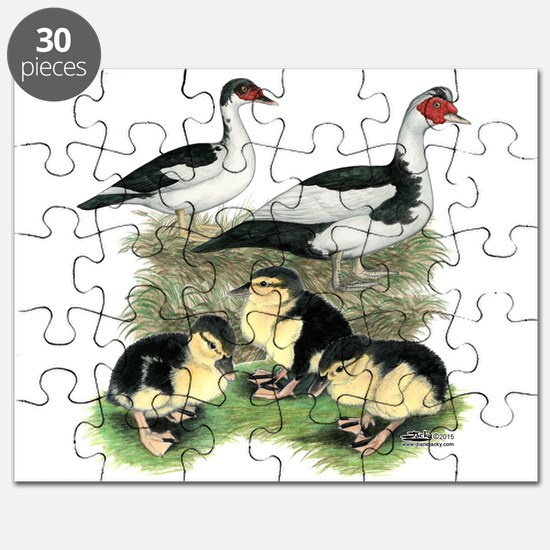 Muscovy Ducks Black Pied Puzzle