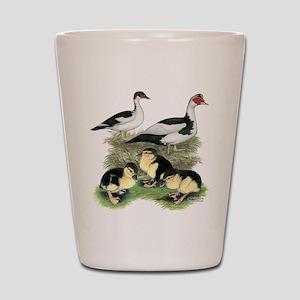 Muscovy Ducks Black Pied Shot Glass