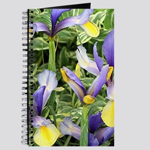 Yellow & purple irises Journal