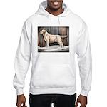 Labrador Retriever Hooded Sweatshirt