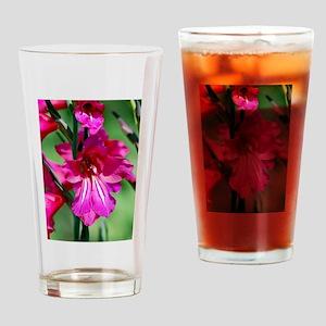 Pink hybrid gladiola Drinking Glass