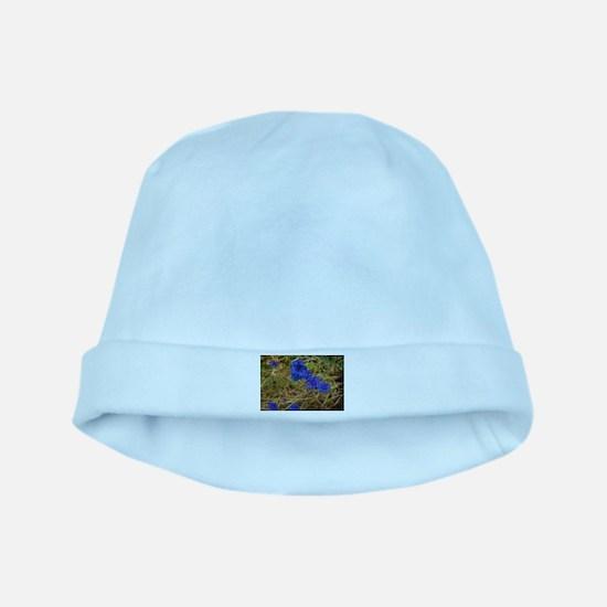 Cornflowers baby hat